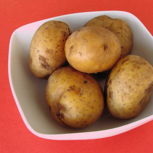 Recipe Boiled Potatoes Frije